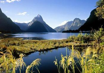 新西兰岛屿湾5日游